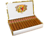 Romeo Y Julieta: Short Churchills